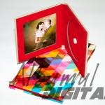 carcase DVD foto